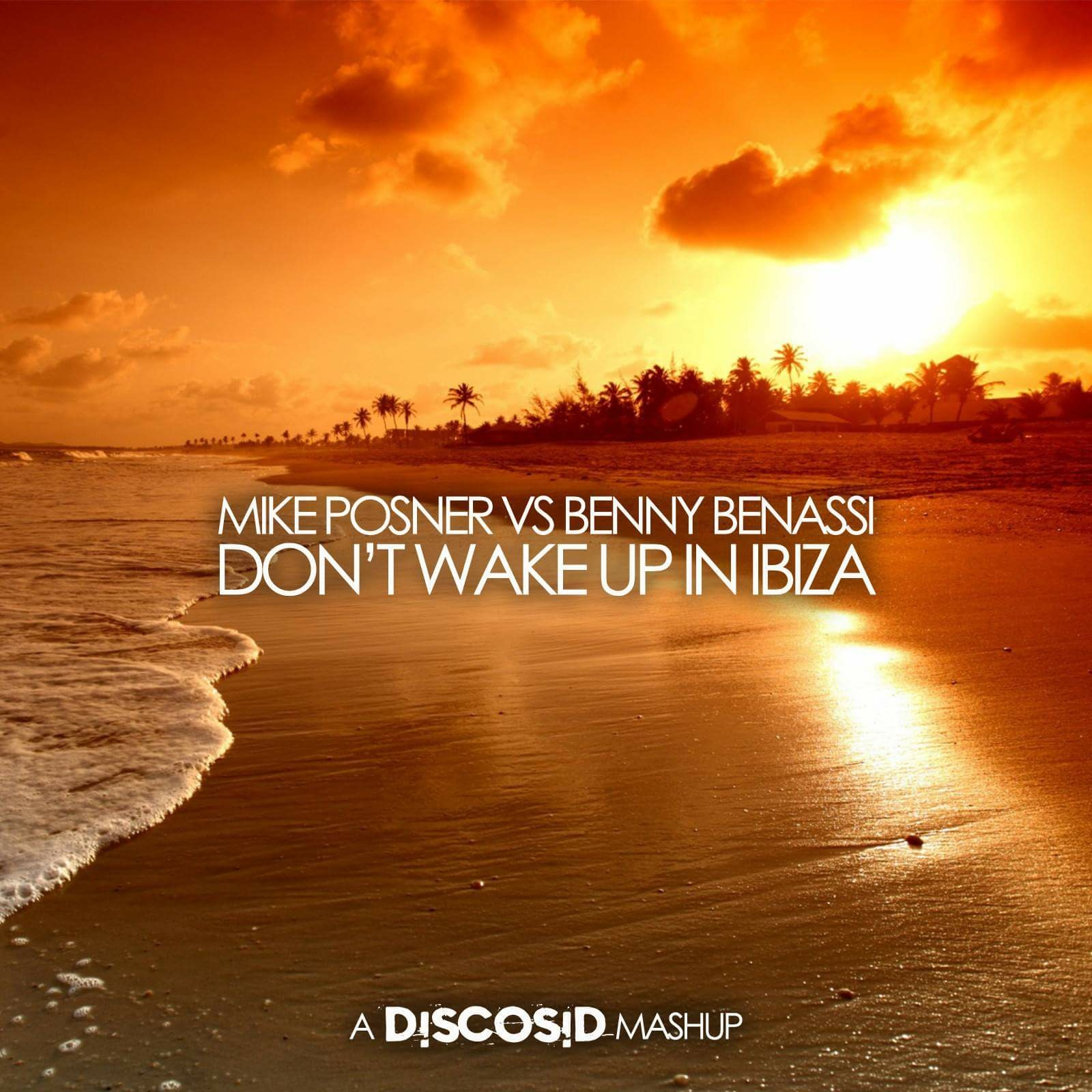 Mike Posner Vs Benny Benassi - Don't Wake Up In Ibiza (Discosid Mashup)