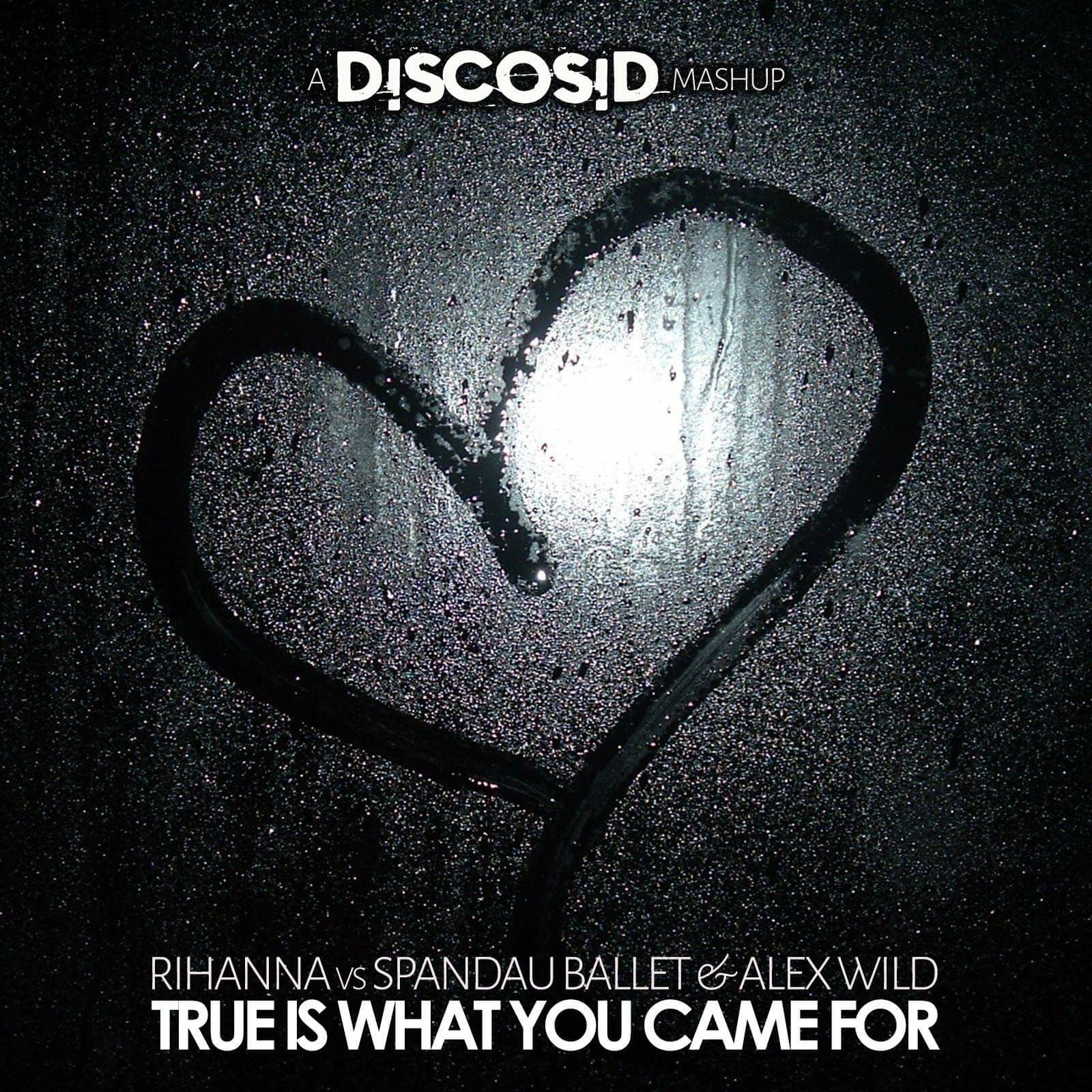 Rihanna Vs Spandau Ballet & Alex Wild - True Is What You Came For (Discosid Mashup)