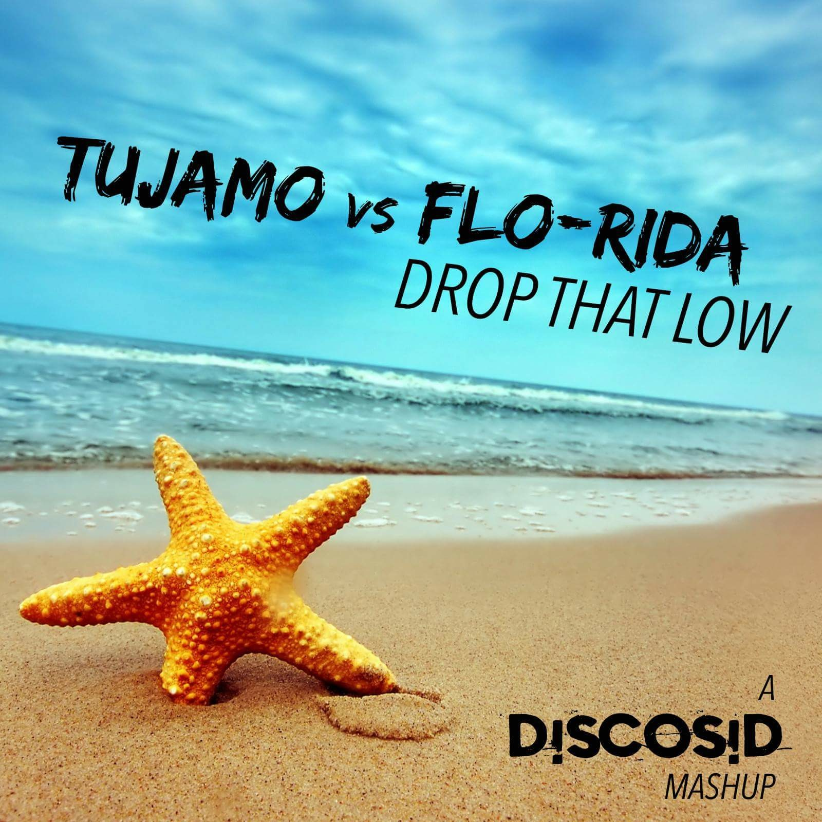 Tujamo Vs Flo Rida - Drop That Low (Discosid Mashup)