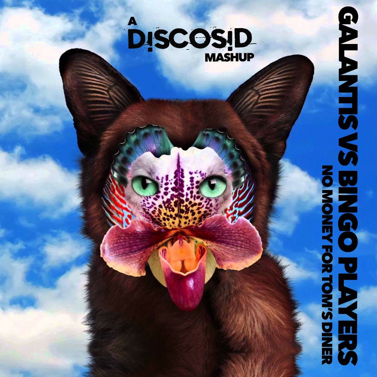 Galantis Vs Bingo Players - No Money For Tom's Diner (Discosid Mashup)